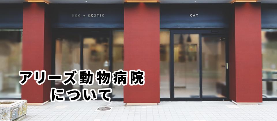 アリーズ動物病院について